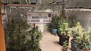 MANİSA'DA EVDE UYUŞTURUCU ÜRETEN KİŞİ YAKALANDI