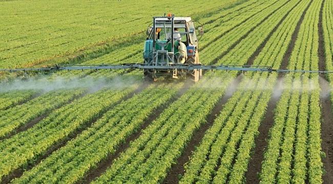 TÜİK: Devlet destekli tarım sigortalarında toplam sigorta bedeli yüzde 30,7 arttı