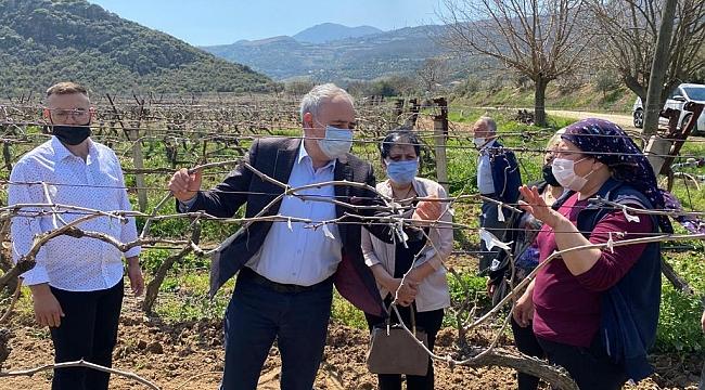 Bakırlıoğlu, çiftçilerin zararının karşılanmasını istedi