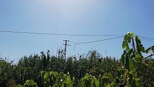 Bağda 120 metrelik kablo çalındı