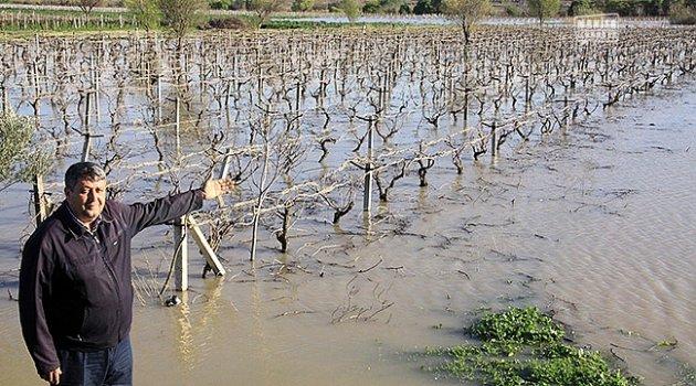 Bağlar sular altında kaldı
