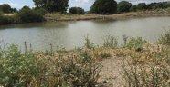 Gördes'e 7 Adet Hayvan İçme Suyu Göleti Yapılıyor