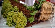 Üzüm üreticisine 'Erken hasat' uyarısı