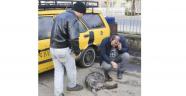 Manisa'da Hayvanseverler Ayaklandı