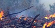 Turgutlu'da yangın